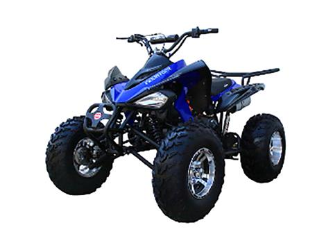 2018 Coolster ATV-3150CXC in Howard Lake, Minnesota