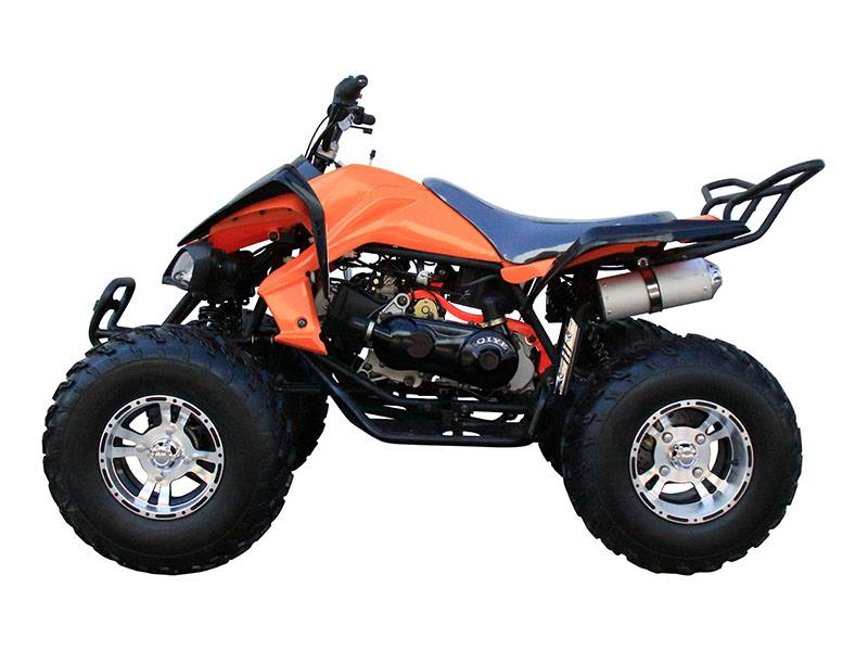2018 Coolster ATV-3150CXC in Virginia Beach, Virginia