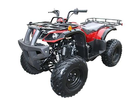 2018 Coolster ATV-3150DX2 in Howard Lake, Minnesota