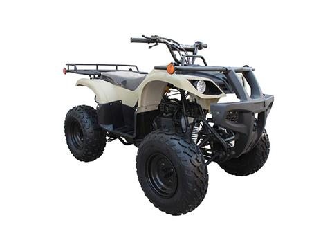 2018 Coolster ATV-3150DX2 in Chula Vista, California