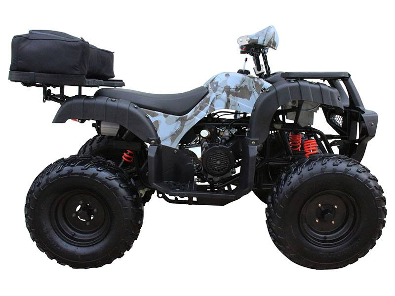 2018 Coolster ATV-3150DX4 in Chula Vista, California - Photo 1