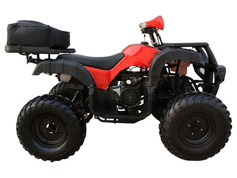 2018 Coolster ATV-3150DX4 in Howard Lake, Minnesota