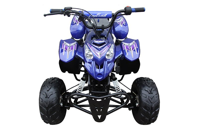 2019 Coolster ATV-3050B in Chula Vista, California