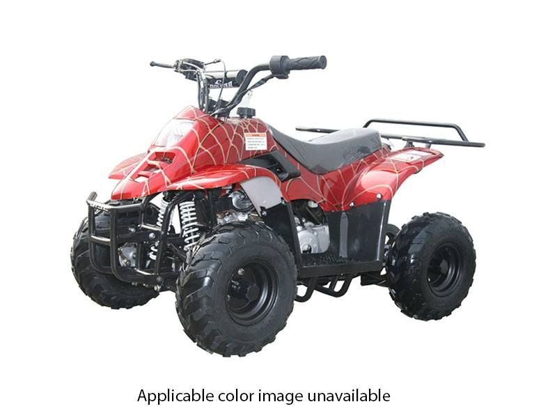 2019 Coolster ATV-3050C in Chula Vista, California