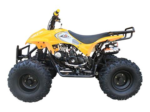 2019 Coolster ATV-3125A2 in Howard Lake, Minnesota