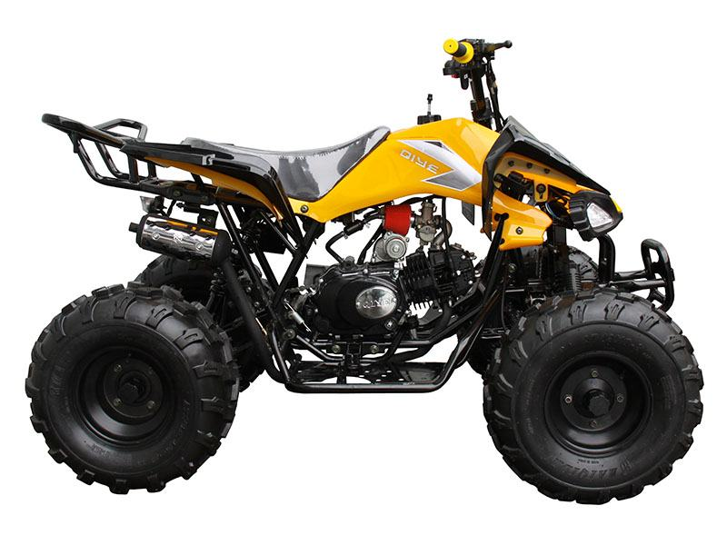 2019 Coolster ATV-3125C-2 in Chula Vista, California - Photo 1
