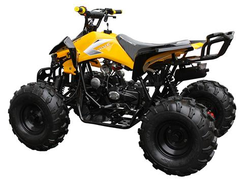 2019 Coolster ATV-3125C-2 in Chula Vista, California - Photo 4