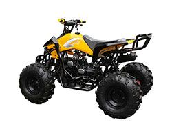 2019 Coolster ATV-3125CX-2 in Knoxville, Tennessee - Photo 3