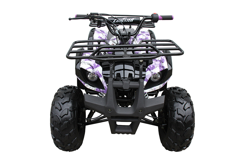 2019 Coolster ATV-3125XR8-US in Knoxville, Tennessee