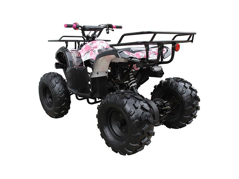 2019 Coolster ATV-3125XR8-U in Chula Vista, California