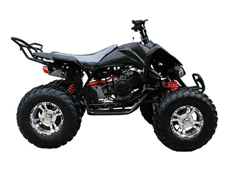 2019 Coolster ATV-3150CXC in Knoxville, Tennessee - Photo 1
