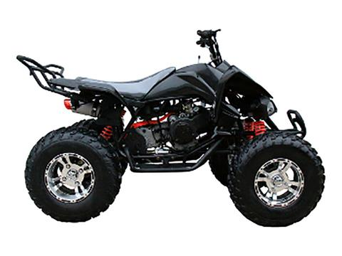 2019 Coolster ATV-3150CXC in Howard Lake, Minnesota