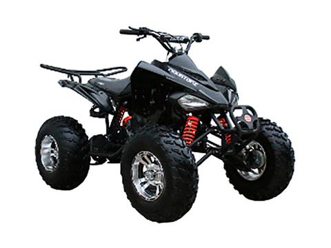 2019 Coolster ATV-3150CXC in Knoxville, Tennessee - Photo 2