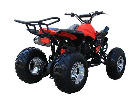 2019 Coolster ATV-3150CXC in Chula Vista, California - Photo 1