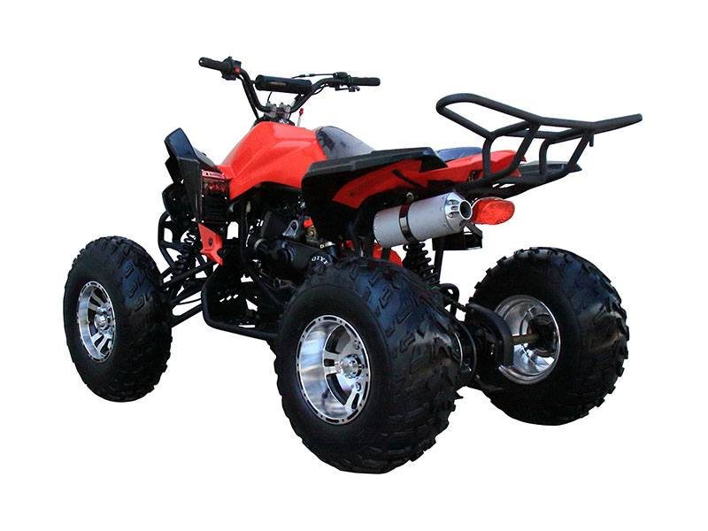 2019 Coolster ATV-3150CXC in Chula Vista, California - Photo 2