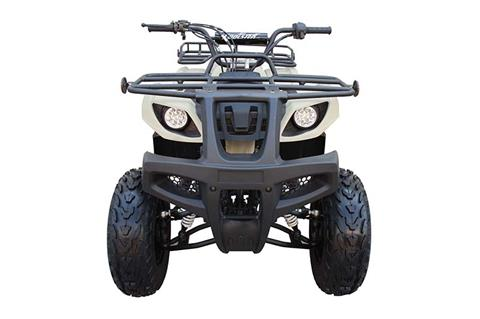 2019 Coolster ATV-3150DX-2 in Chula Vista, California