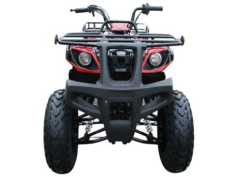 2019 Coolster ATV-3150DX-2 in Howard Lake, Minnesota