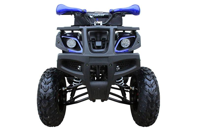 2019 Coolster ATV-3150DX-4 in Knoxville, Tennessee - Photo 4