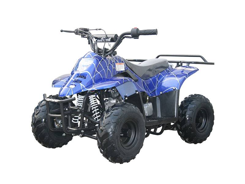 2020 Coolster ATV-3050C in Knoxville, Tennessee - Photo 1
