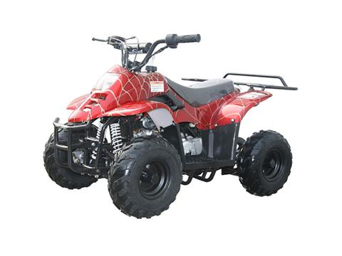 2020 Coolster ATV-3050C in Knoxville, Tennessee