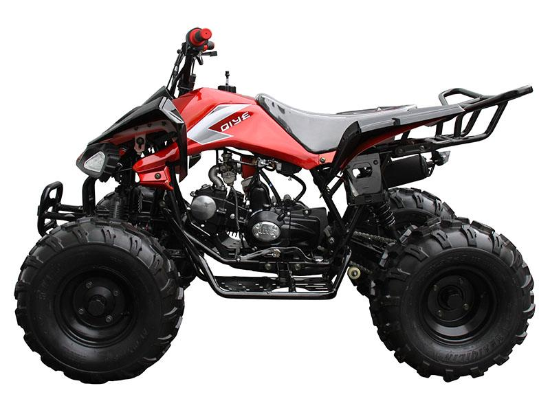 2020 Coolster ATV-3125CX-2 in Virginia Beach, Virginia - Photo 2