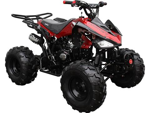 2020 Coolster ATV-3125CX-2 in Virginia Beach, Virginia - Photo 3