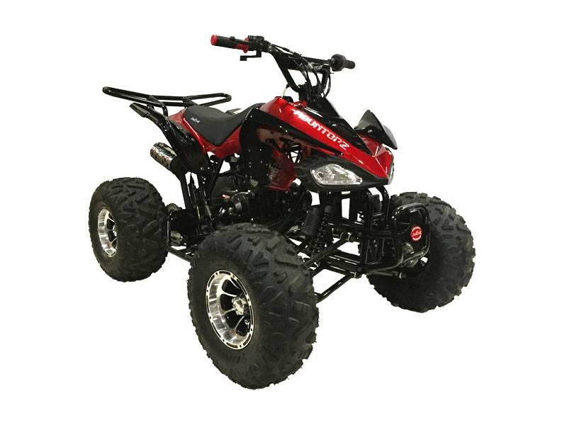 2020 Coolster ATV-3125CX-3 in Knoxville, Tennessee - Photo 1