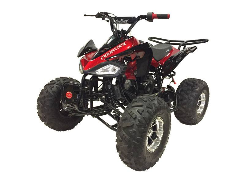2020 Coolster ATV-3125CX-3 in Knoxville, Tennessee - Photo 2