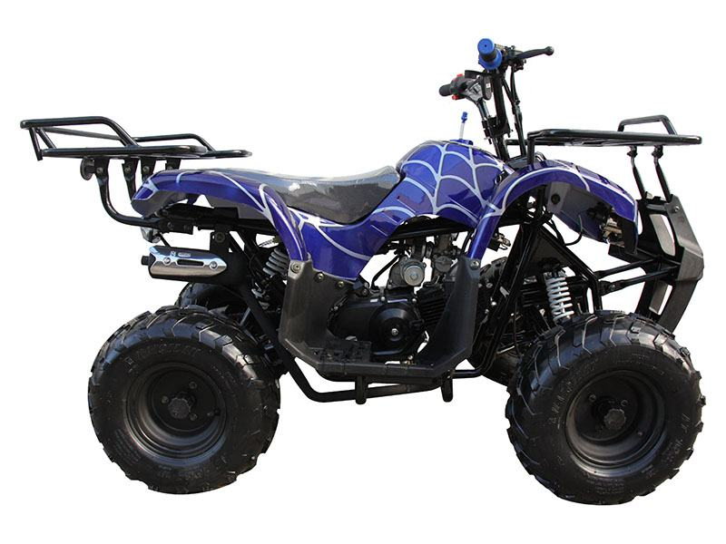 2020 Coolster ATV-3125R in Knoxville, Tennessee - Photo 1