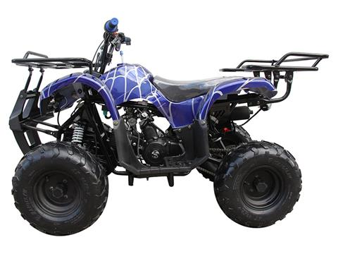 2020 Coolster ATV-3125R in Knoxville, Tennessee - Photo 2