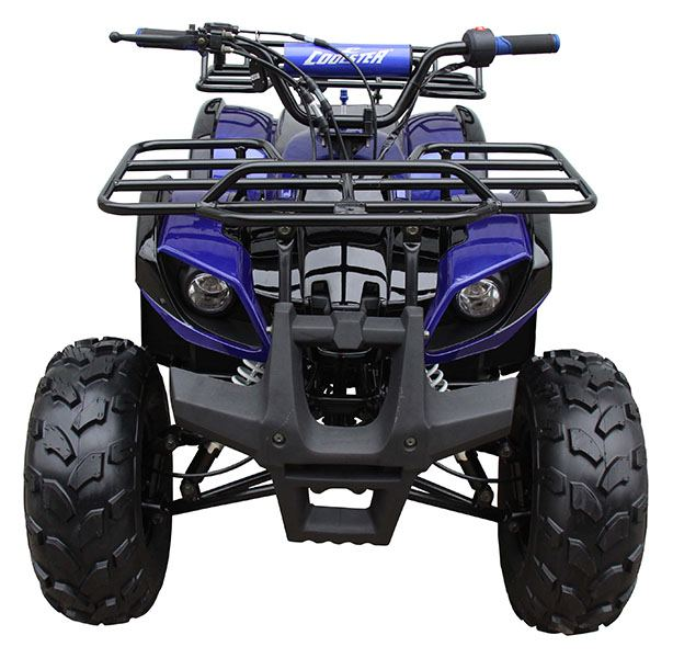 2020 Coolster ATV-3125XR8-U in Knoxville, Tennessee - Photo 1