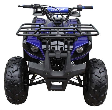 2020 Coolster ATV-3125XR8-US in Virginia Beach, Virginia - Photo 1