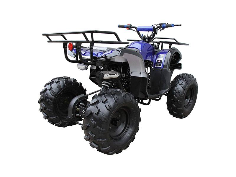 2020 Coolster ATV-3125XR8-U in Knoxville, Tennessee - Photo 2