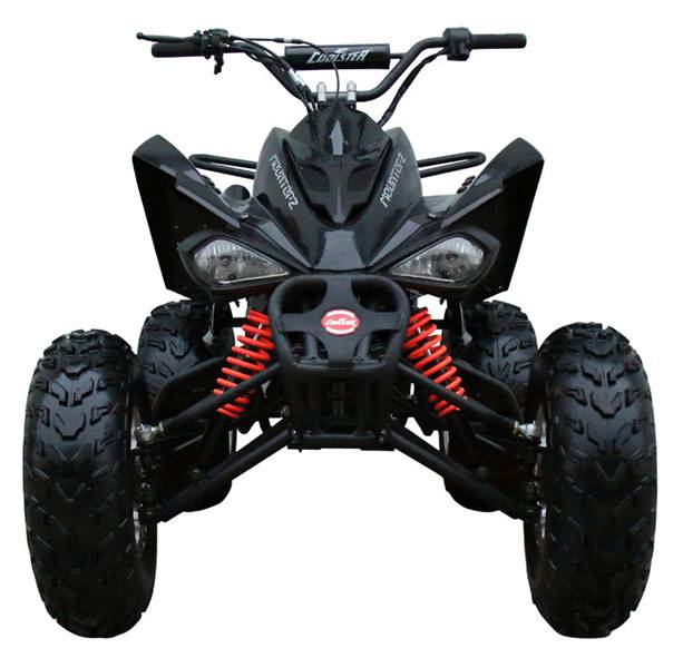 2020 Coolster ATV-3150CXC in Virginia Beach, Virginia