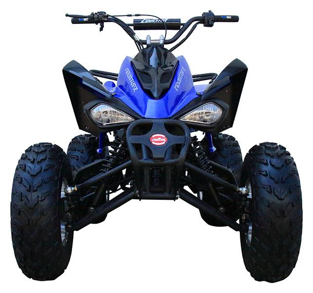 2020 Coolster ATV-3150CXC in Knoxville, Tennessee