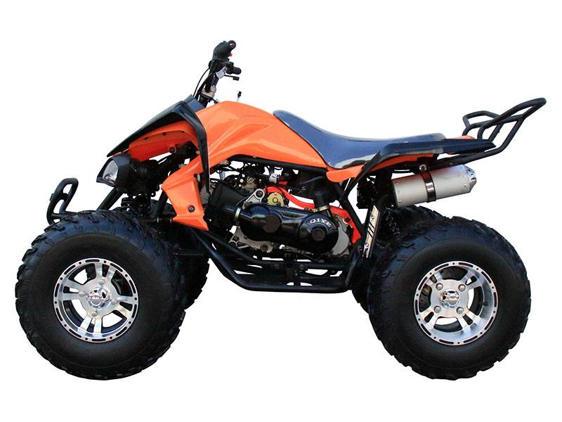 2020 Coolster ATV-3150CXC in Knoxville, Tennessee - Photo 2
