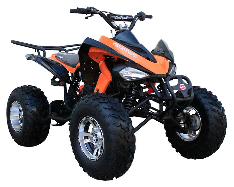2020 Coolster ATV-3150CXC in Knoxville, Tennessee - Photo 3