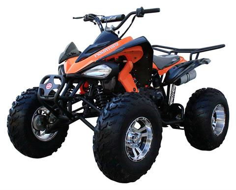 2020 Coolster ATV-3150CXC in Knoxville, Tennessee - Photo 4
