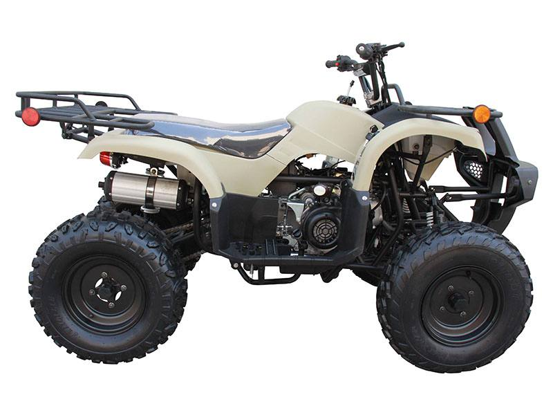 2020 Coolster ATV-3150DX-2 in Knoxville, Tennessee - Photo 1