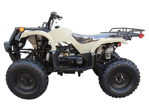 2020 Coolster ATV-3150DX-2 in Knoxville, Tennessee - Photo 2