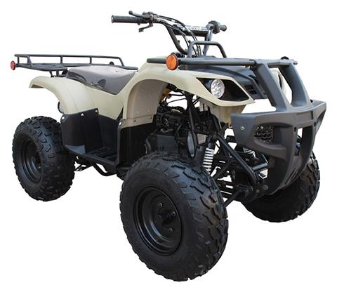2020 Coolster ATV-3150DX-2 in Knoxville, Tennessee - Photo 3