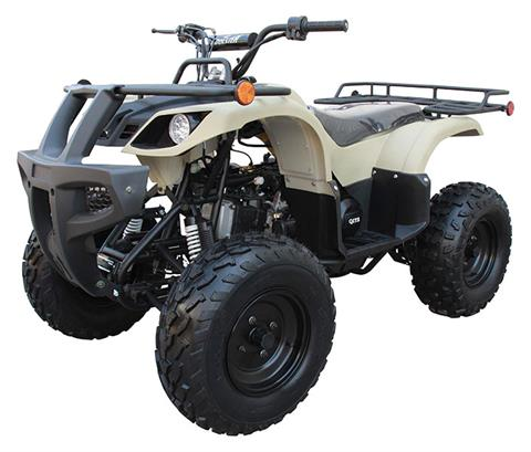 2020 Coolster ATV-3150DX-2 in Knoxville, Tennessee - Photo 4