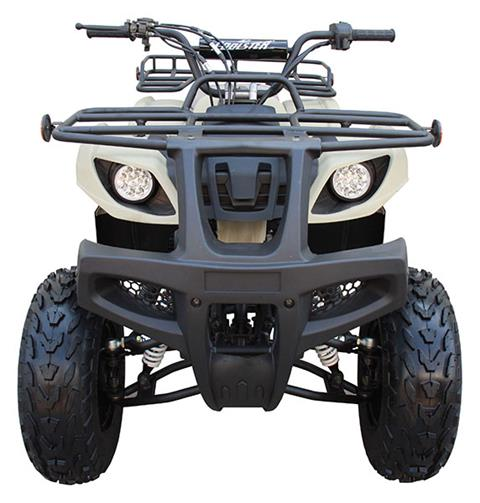 2020 Coolster ATV-3150DX-2 in Knoxville, Tennessee - Photo 5