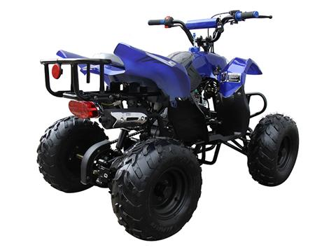 2021 Coolster ATV-3050B in Knoxville, Tennessee - Photo 6
