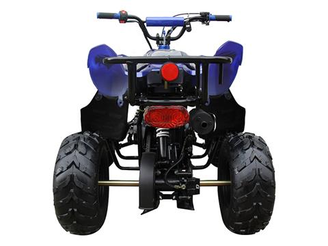 2021 Coolster ATV-3050B in Knoxville, Tennessee - Photo 8