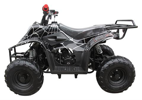 2021 Coolster ATV-3050C in Virginia Beach, Virginia - Photo 2