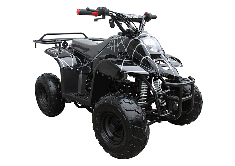 2021 Coolster ATV-3050C in Virginia Beach, Virginia - Photo 3