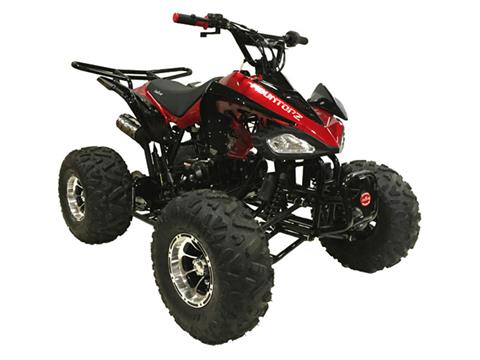 2021 Coolster ATV-3125CX-3 in Knoxville, Tennessee