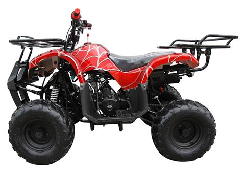 2021 Coolster ATV-3050D in Virginia Beach, Virginia - Photo 2