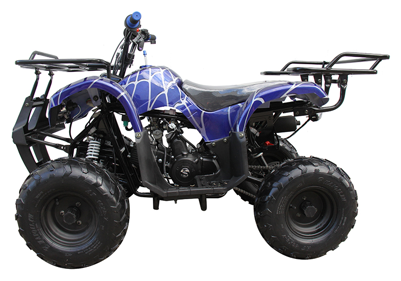 2021 Coolster ATV-3125R in Knoxville, Tennessee - Photo 2